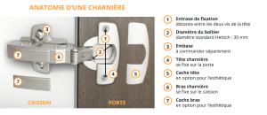 anatomie charniere