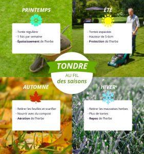 calendrier entretien pelouse