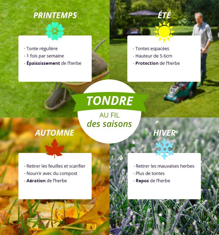 Calendrier d'entretien de la pelouse