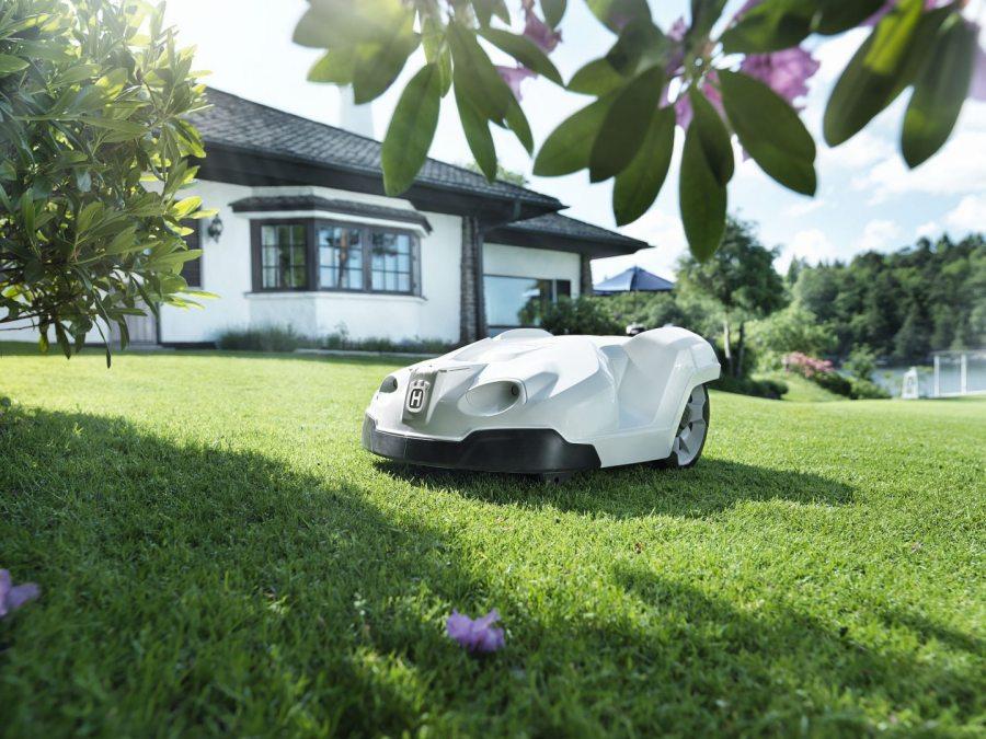 tondeuse robot dans un jardin