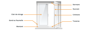 anatomie schéma fenêtre