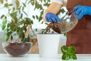 Bille argile pots de fleurs