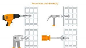 schema pose cheville molly